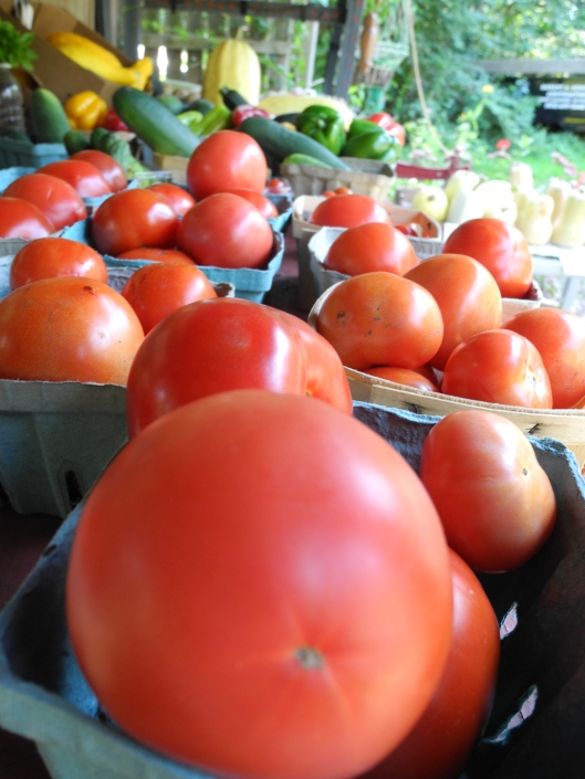 tomatoes and squash fro sale at the farm stand