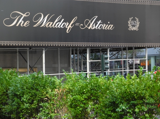 Waldorf-Astoria canopy with hedges
