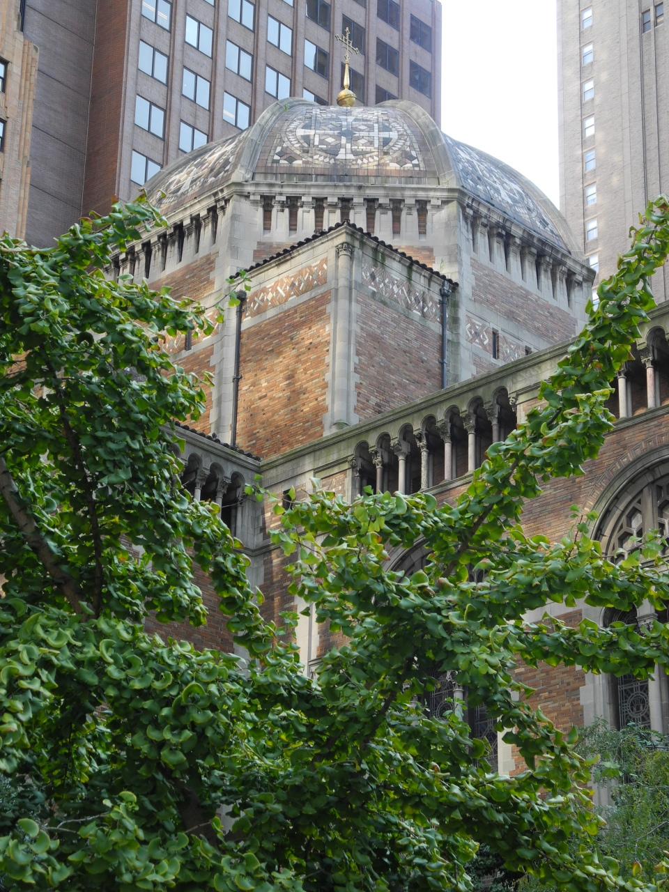 dome of saint barts with trees