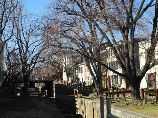 Canal and locks lined by townhouses + winter trees