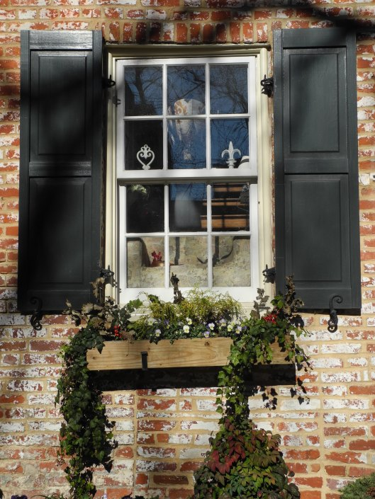 A Georgetown window