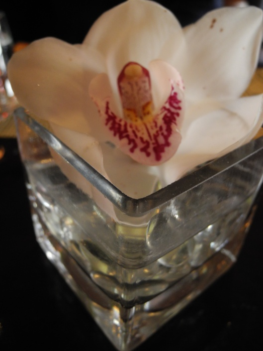 A Orchid in a square glass vase.