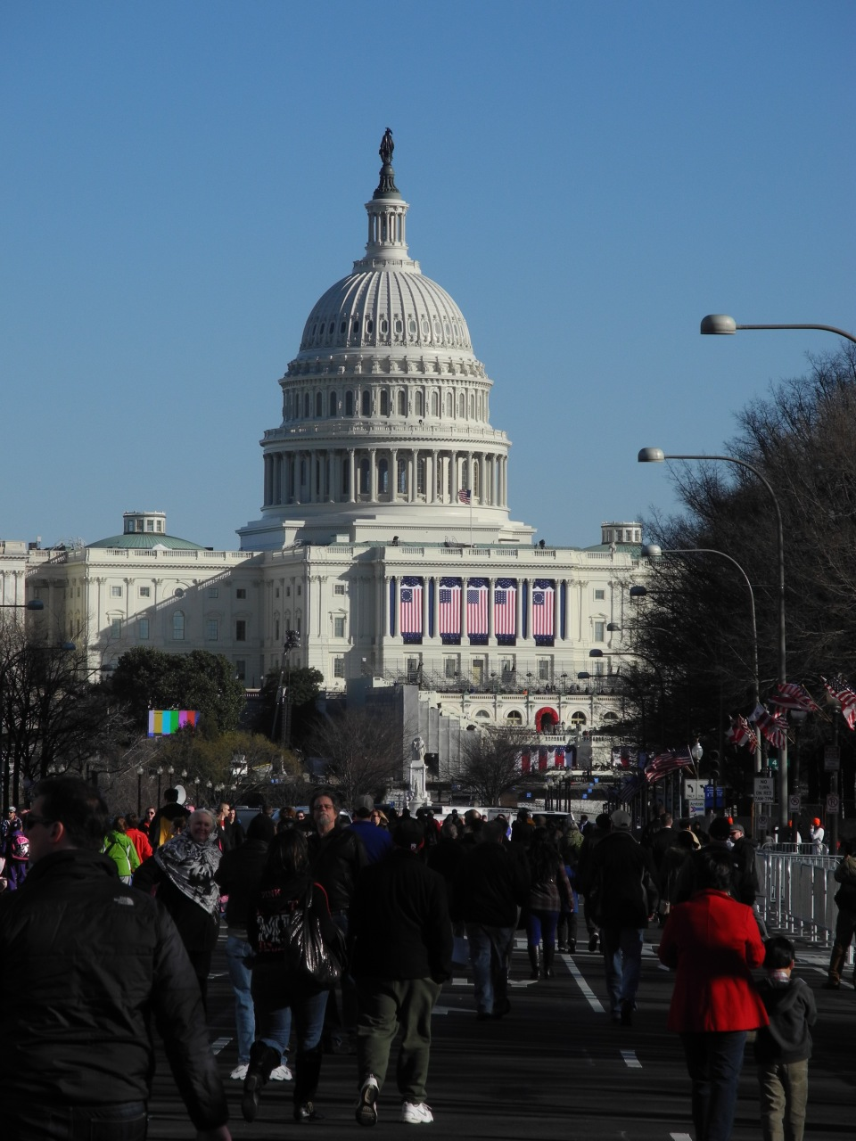 Flags on the Capitol