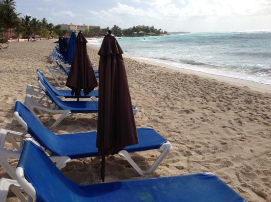 row of beachside loungers