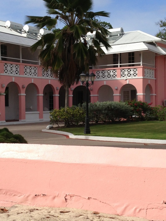 Pink hotel with palm trees